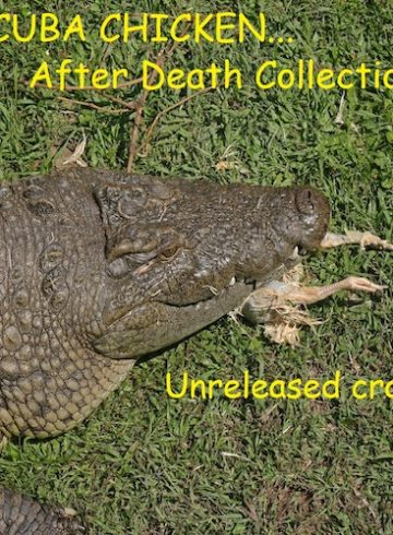 After Death Collection